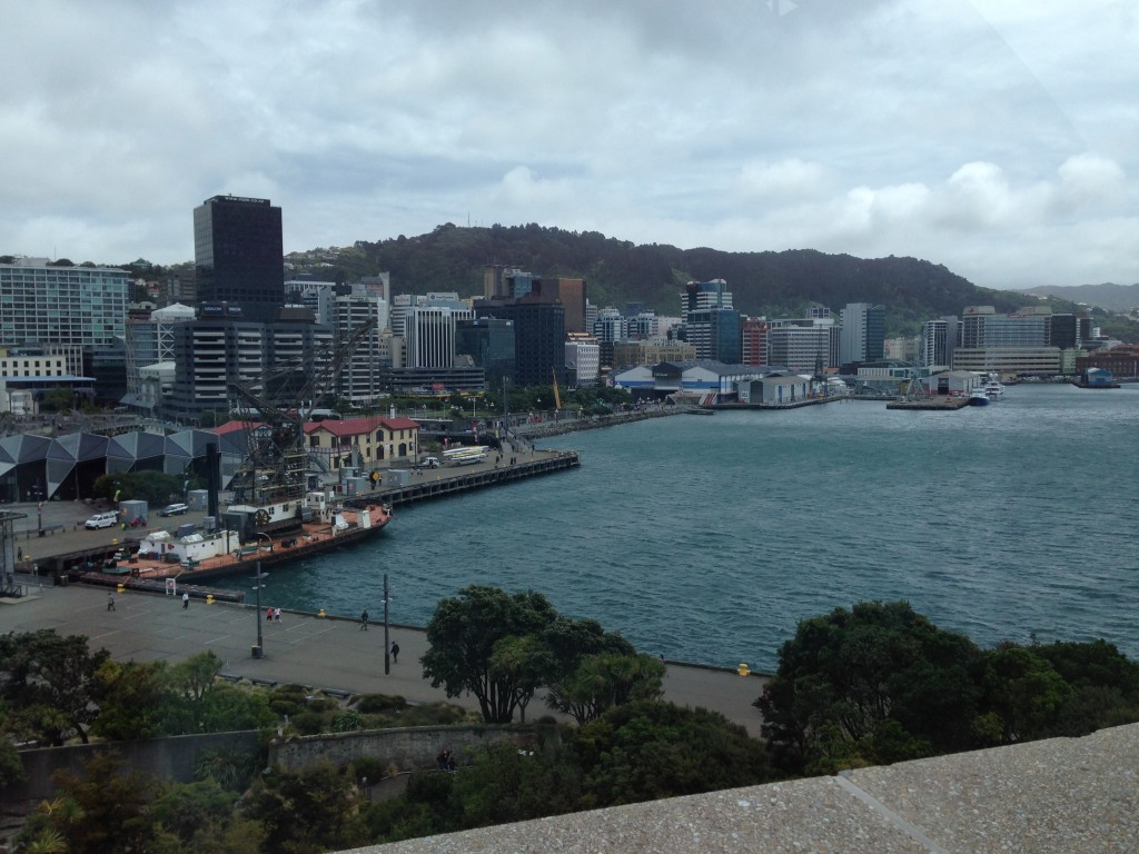 View of Wellington from Te Papa