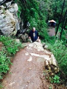 David on path