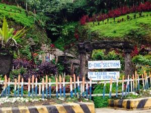 Roadside garden